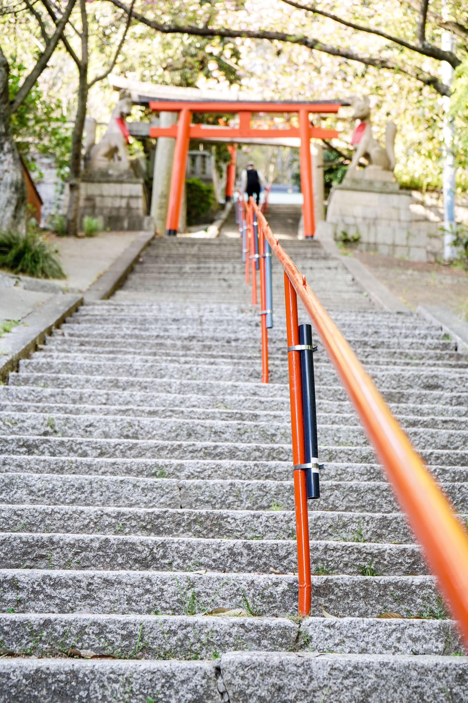 a7IIで諏訪神社参道を撮影