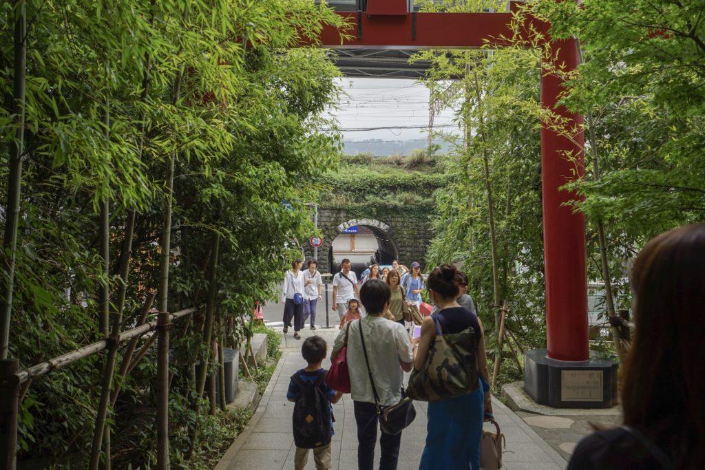 本殿から鳥居に向けって参道を歩いている時の写真。